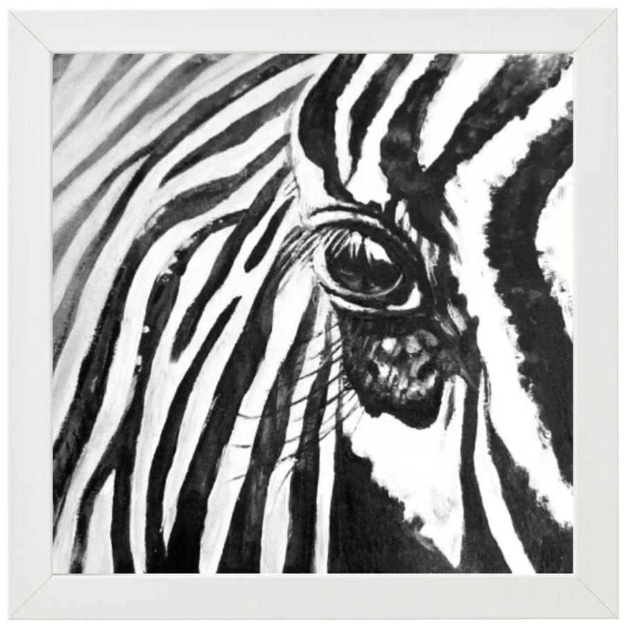Zebra Series 1