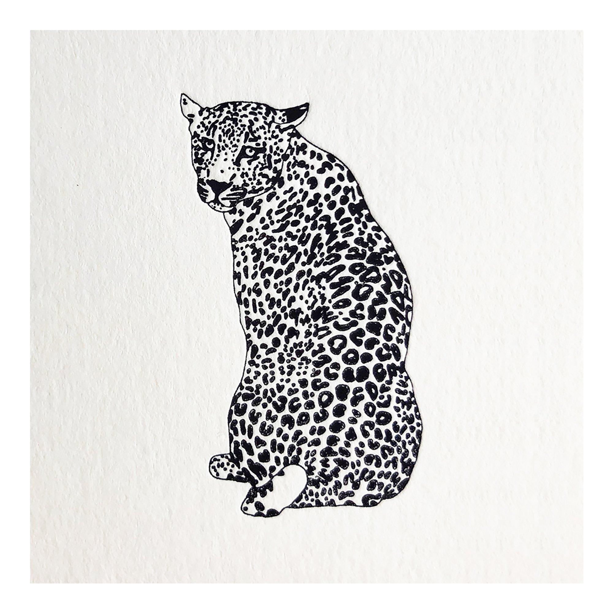 leopard_illos_2000x2000